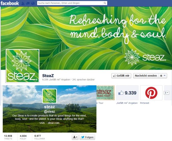 Social Media ROI: Diese Unternehmen machen es vor steaz