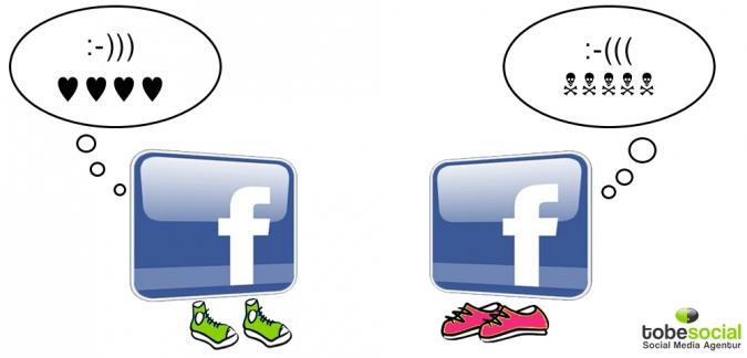 Grafik Facebook Fan Typen positive und negative Kommentare