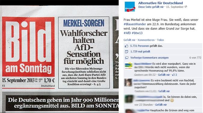 Facebook Page Analyse Parteien Wahlkampf 2013 Anzahl Fanwachstum alternative deutschland
