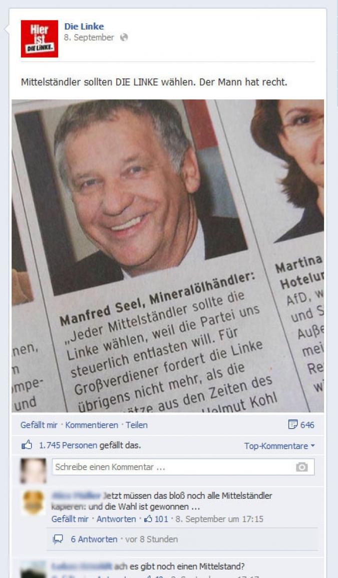 Facebook Page Analyse Parteien Wahlkampf 2013 Anzahl Fanwachstum die linke