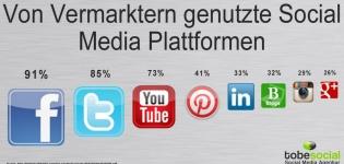 Grafik Social Media Plattformen