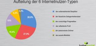 Grafik Studie Internetnutzer Typen Aufteilung