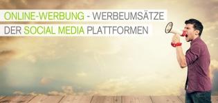 Wie hoch sind die Werbeumsätze der verschiedenen Social Media Plattformen?