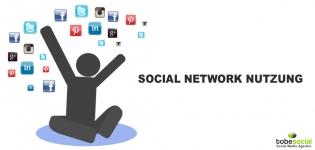 Grafik Social Media Nutzung